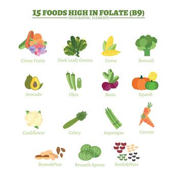 Folate - Folic Acid
